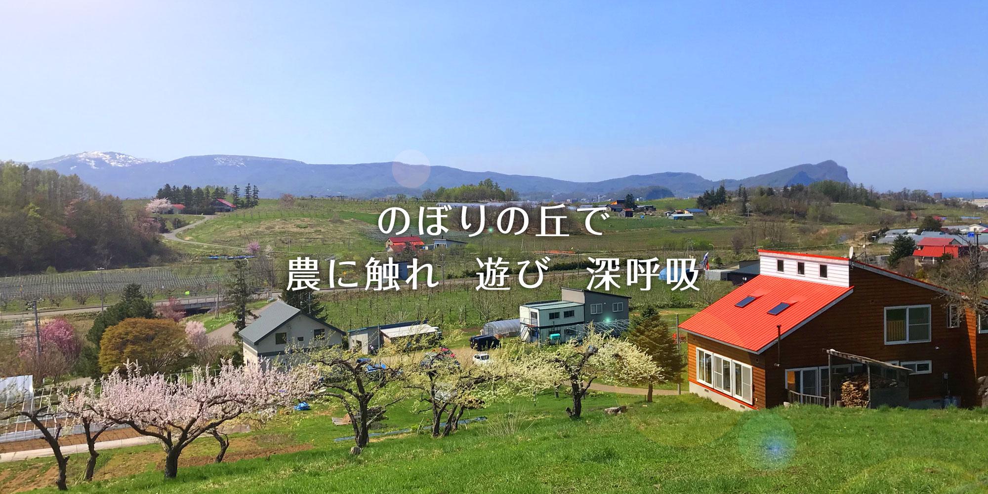 のぼりの丘で 農に触れ 遊び 深呼吸